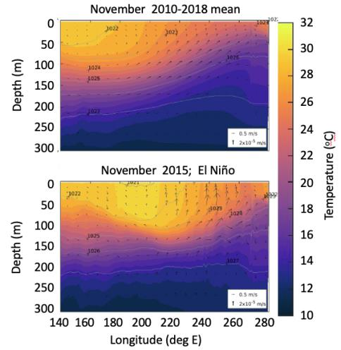 Temperature and heat content in the tropical Pacific as represented in a high-resolution state estimate that optimally combines observations with numerical models shows the warm water volume being redistributed during El Niño events. We are diagnosing model budgets to gain mechanistic understanding of this heat redistribution.