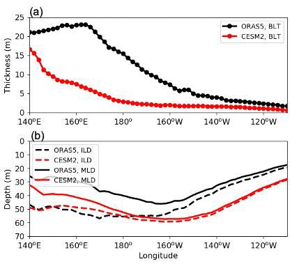 The longitudinal distribution of the (a) BLT, (b) ILD (dashed) and MLD (solid) for ORAS5 (black) and CESM2 (red).