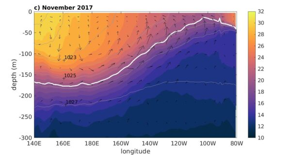 Temperature along the equator from the state estimate during the El Niño, and November 2017. Gray contours show isopycnals; arrows show the zonal and vertical components of velocity. The white contour shows the 20˚C isotherm.